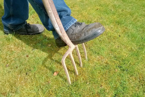 Aeration-Dethatching-feat