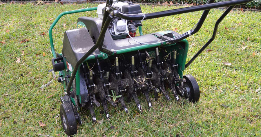 Dethatching-vs-Aerating-the-Lawn